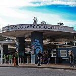 Vancouver Aquarium Sold to US Tourist Attraction Company