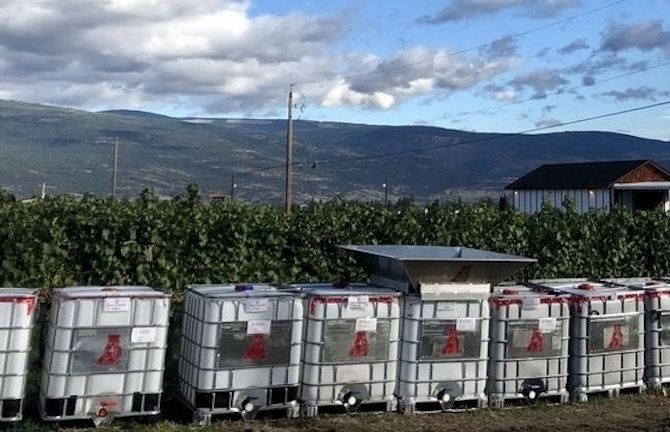 Okanagan Company Gets Federal Support to upcycle winery Waste